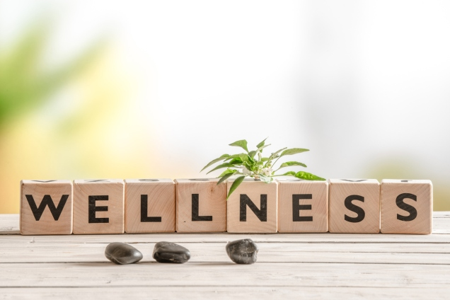 Building wellness to overcome pain